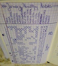 2017_02-healthy-habit-tracking-2